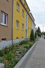 Stadtweg-2.jpg
